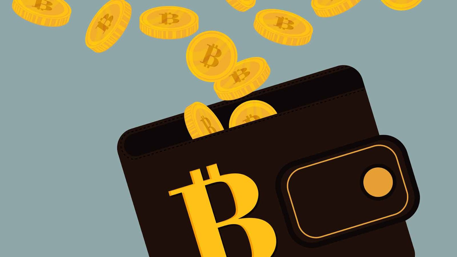 The 3 best Bitcoin wallets for storing your bitcoin (BTC)
